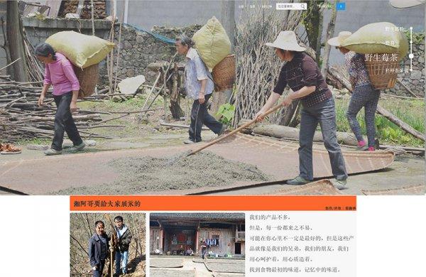 张家界湘阿哥特产商城网站制作案例